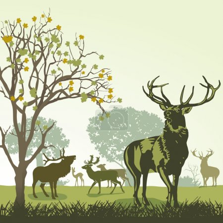 Illustration for Deer and wildlife in autumn - Royalty Free Image