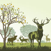 Deer and wildlife in autumn