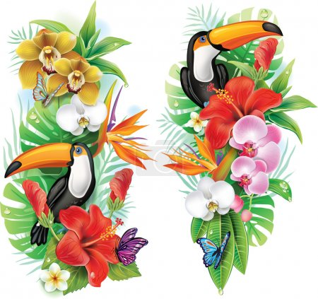 Tropical flowers, toucan and a butterflies