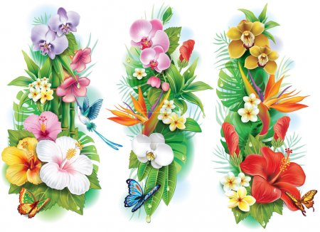 Illustration for Arrangement from tropical flowers and leaves - Royalty Free Image