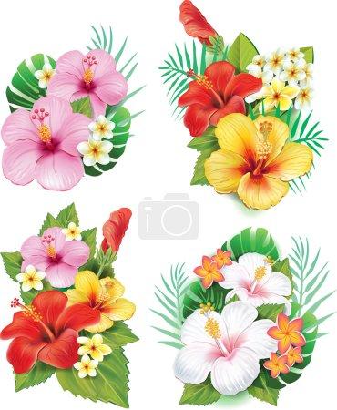 Arrangement from hibiscus flowers