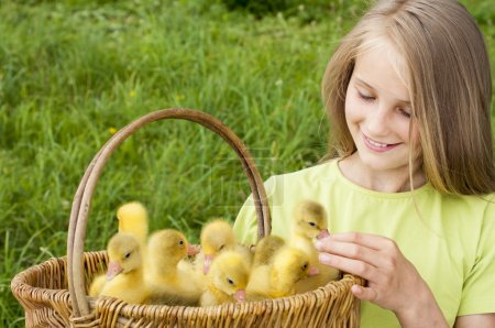 girl with goslings outdoor