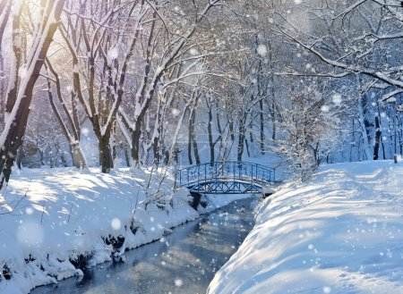 Beautiful winter landscape with the river...