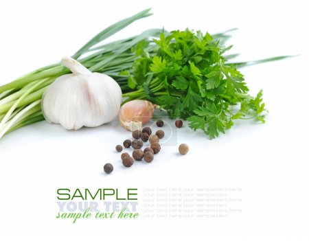 Grains of pepper are with a garlic and greenery of parsley on a white background