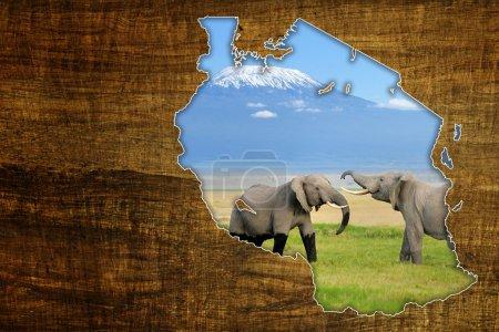 Tanzania Wildlife Map Design