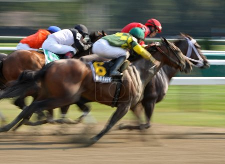 """Photo for SARATOGA SPRINGS - AUG 31: Jockey Jose Lezcano and """"Kid Katge"""" surge down the outside to finish second in The Big Bambu Stakes at Saratoga Race Course on Aug 31, 201 - Royalty Free Image"""