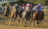 Fed Biz Wins The San Fernando Stakes