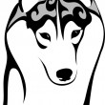 Vector image of a dog breed Siberian Husky...