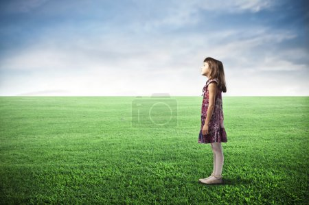 Photo for A child is standing in a large grace field. - Royalty Free Image