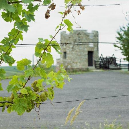 Lampelberg castle