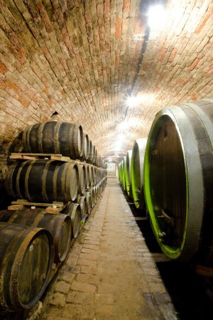 wine cellar, Jaroslavice, Czech Republic