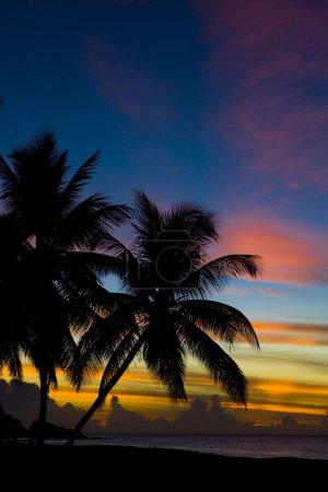 Foto de Puesta de sol sobre el mar Caribe, Playa Tortuga, tobago - Imagen libre de derechos
