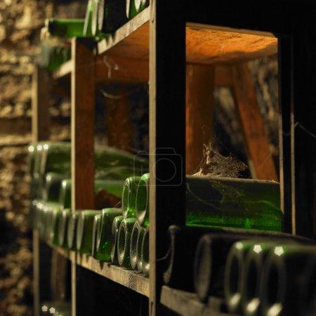 wine archive, wine cellar, Litomerice, Czech Republic