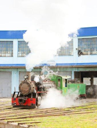 Steam locomotive in depot