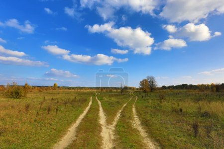 Photo for Fork road in steppe - Royalty Free Image