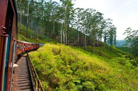 Photo for Travel by train through scenic mountain landscape in Nuwarelia, Sri Lanka - Royalty Free Image