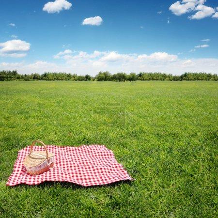 Outdoor picnic