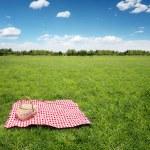 Постер, плакат: Outdoor picnic