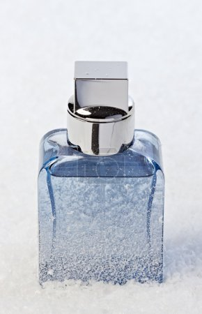Frosted perfume stands in the snow