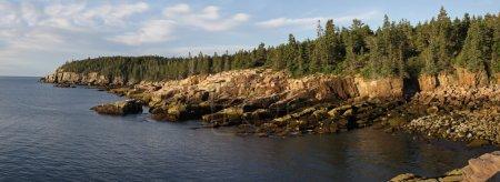 Otter Cliffs Dawn Panorama