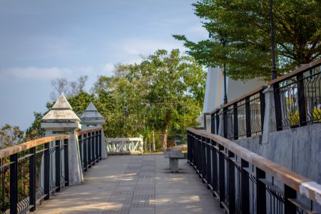 Walkway with columns and trees