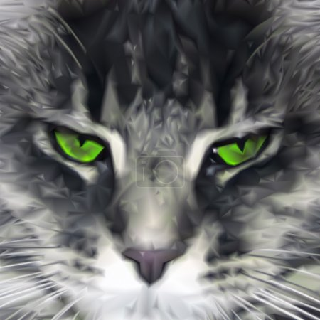 Close-up of green-eyed Maine Coon cat. Vector