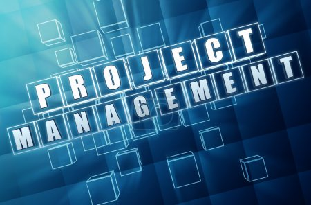 project management in blue glass cubes