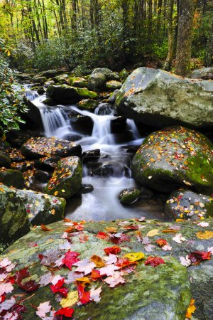 Photo for A small water fall in the Smoky mountains with red leaves - Royalty Free Image