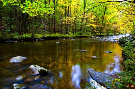 Photo for A slow moving stream in the Smoky Mountains in fall - Royalty Free Image