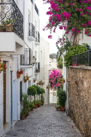 Side Street in Mojacar Village