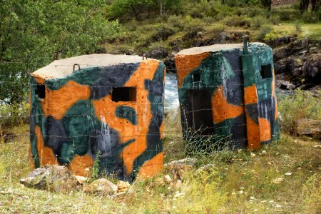 Сamouflaged military bunkers