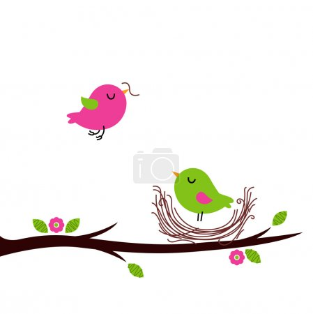 Cute spring nesting birds isolated on white