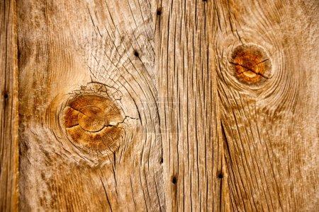 Rustic Wooden Textures