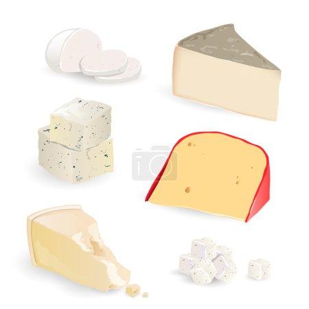 Illustration pour Ensemble vectoriel avec différentes pièces de fromage - image libre de droit
