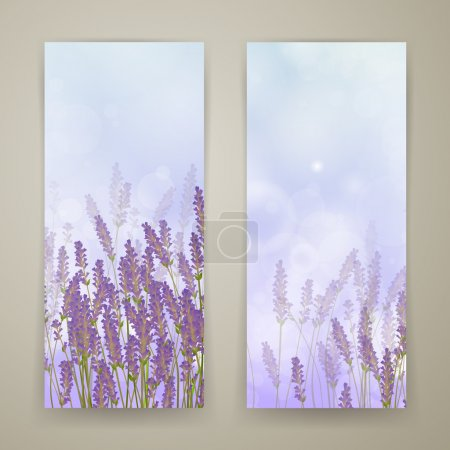 Illustration for Vector Illustration of Two Lavender Banners - Royalty Free Image