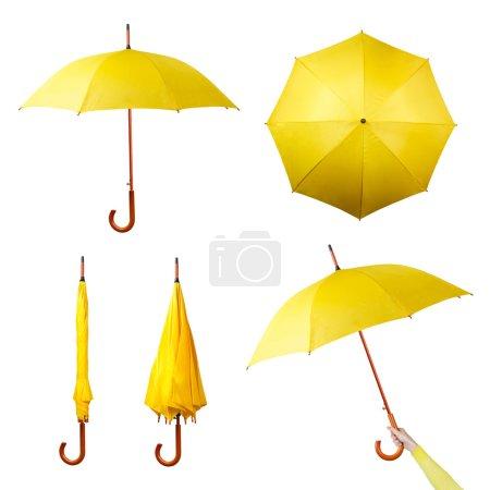Set of yellow umbrellas