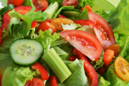 Salad with lettuce and fresh vegetable close up...
