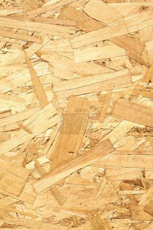 Wooden panel made of pressed wood shavings vertical