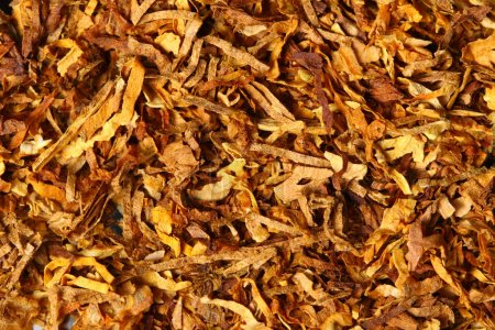 tobacco texture