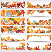 Vector large set of colorful hand drawn style autumn leaves banners illustration