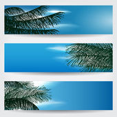 Vector set of beautiful summer themed skies with Sun palm leaves and clouds banner illustrations
