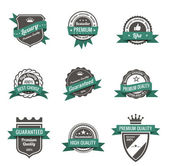 Vintage Labels set of trendy designs Retro logo template High quality Vector