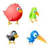 4 funny birds vector