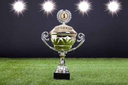 Trophy Cup Lying On Green Pitch Filed