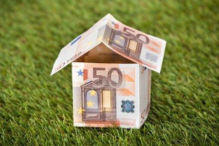 Photo pour Gros plan de la maison de l'euro argent sur les terres herbeuses - image libre de droit
