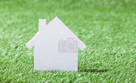 House Model In Grassy Field