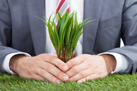 Businessman Holding Saplings