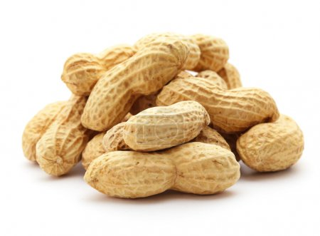 Erdnüsse auf weißem Grund
