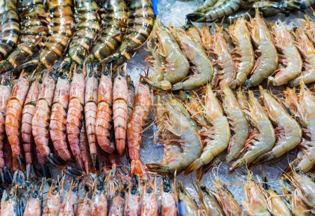 Fresh assorted prawn