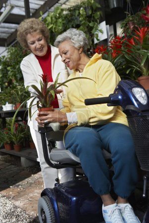 Woman Selling Plant To Disabled Woman At Botanical Garden